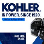 MOTOR KOHLER SERIE 3000